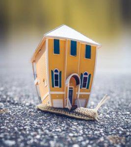 Mobile Tiny Houses